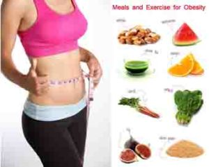 Meals and Exercise for Obesity मोटापा के लिए भोजन और व्यायाम